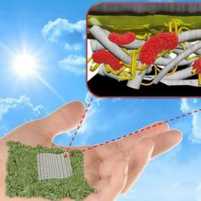 Βιοδιασπώμενη μπαταρία από χαρτί για τη μείωση των ηλεκτρονικών αποβλήτων