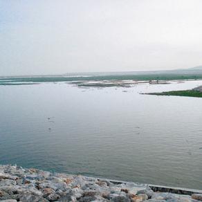 Κάρλα: Ανασύσταση μιας λίμνης, αναγέννηση μιας περιοχής