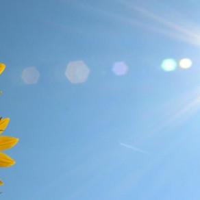 Ρεκόρ υψηλών θερμοκρασιών 160 χρόνων στο σταθμό του ΕΑΑ στο Θησείο.