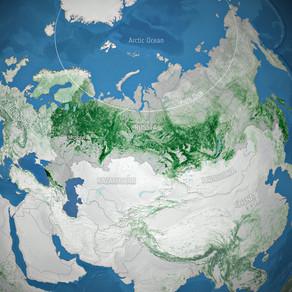 Τα δάση της Ρωσίας αποθηκεύουν περισσότερο άνθρακα από ό,τι πιστεύαμε