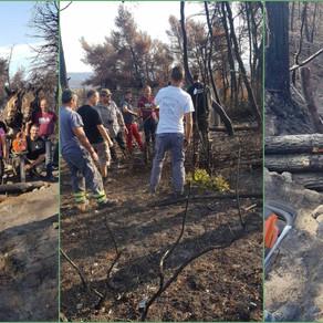 ΥΠΕΝ: Μια σύντομη ενημέρωση για τις εργασίες αποκατάστασης στη Βόρεια Εύβοια