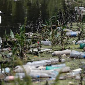 «Ελλάδα Χωρίς Πλαστικά Μίας Χρήσης»: Κάλεσμα σε πολίτες, φορείς και επιχειρήσεις