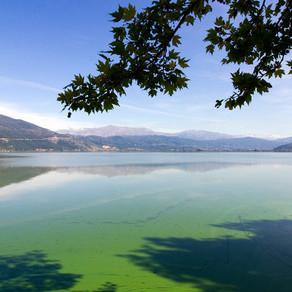 Λίμνη Παμβώτιδα: Μια πηγή φυσικού πλούτου που κινδυνεύει