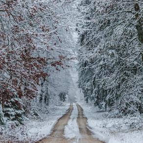 Τι αναμένεται για τον φετινό χειμώνα