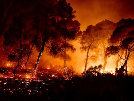 104 δασικές πυρκαγιές μέσα στα τελευταία δύο 24ωρα