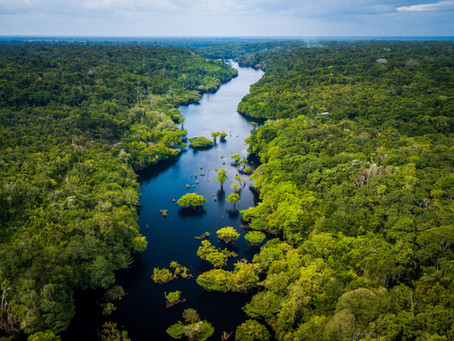 Το τροπικό δάσος του Αμαζονίου από το διάστημα