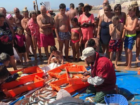 Fiskeri med net og traktor direkte på badestranden