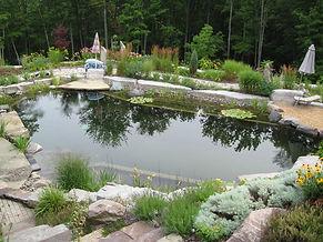 contemporary-pool (1).jpg