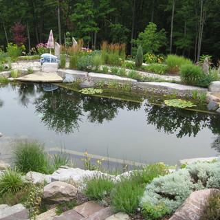 Doğal havuz contemporary-pool