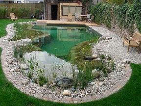 natural-swimming-ponds-eco-swimming-pool