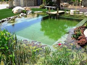 doğal-havuz-bodrum.jpg