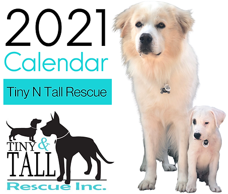 TNT 2021 Calendar - 75% OFF!