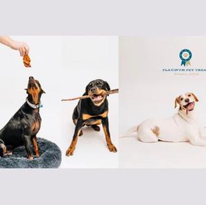 Platinum Pet Treats