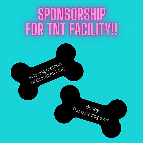 Level 2 Sponsorship for TNT Facility!