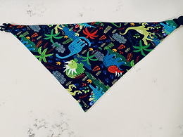 LARGE Boy Bandanas
