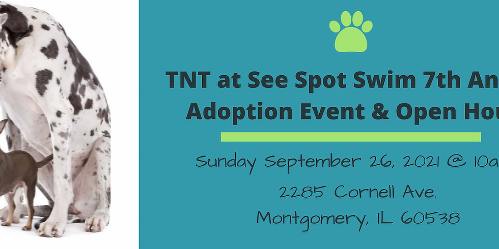 TNT at See Spot Swim!