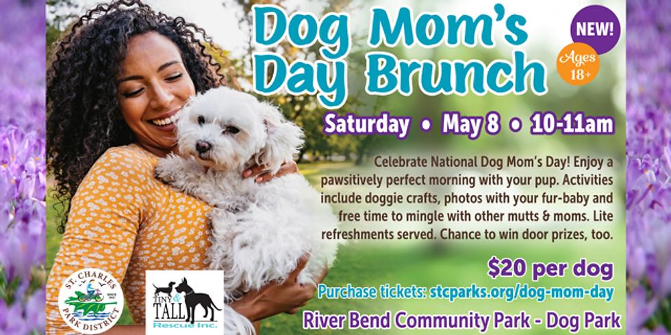 Dog Mom's Day Brunch