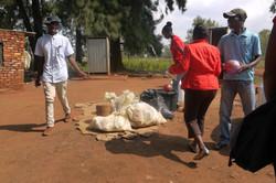 Feeding Programme - organising