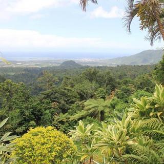 scenery 3 .jpg