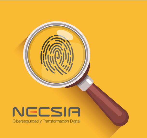 Categorización de los sistemas de información Selección, implementación y evaluación de controles de seguridad Sistemas de información de autorización Supervisión de controles de seguridad Auditorías de Red Interna y externa