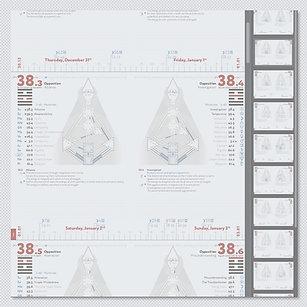 Про-Лайнер ДЧ в формате PDF (англ. яз)