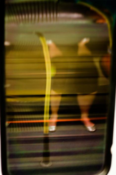 Yellow leg