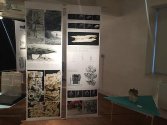 Toshindai: Life-sized exhibition