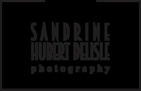Logo sandrine hubert delisle