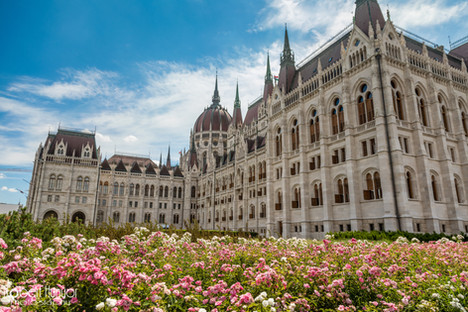 Budapest Parlement with Flowers