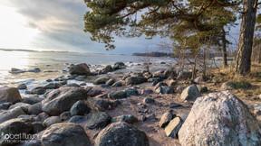 Rocky Shore - Finland