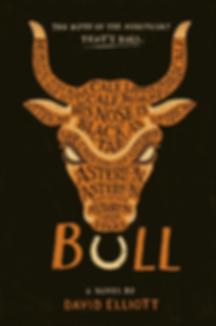Bull cover.webp