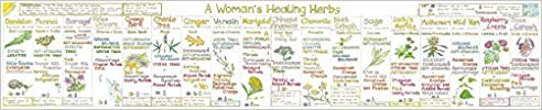 Womans Healthy Herbs