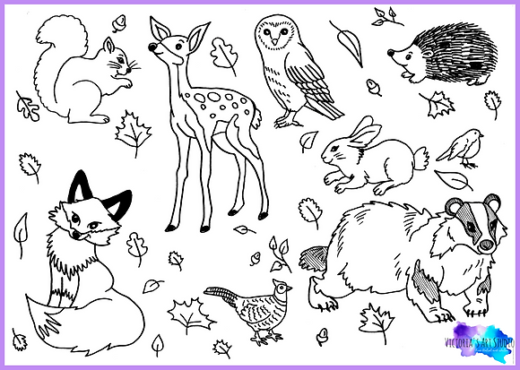 Free downloadable wildlife poster