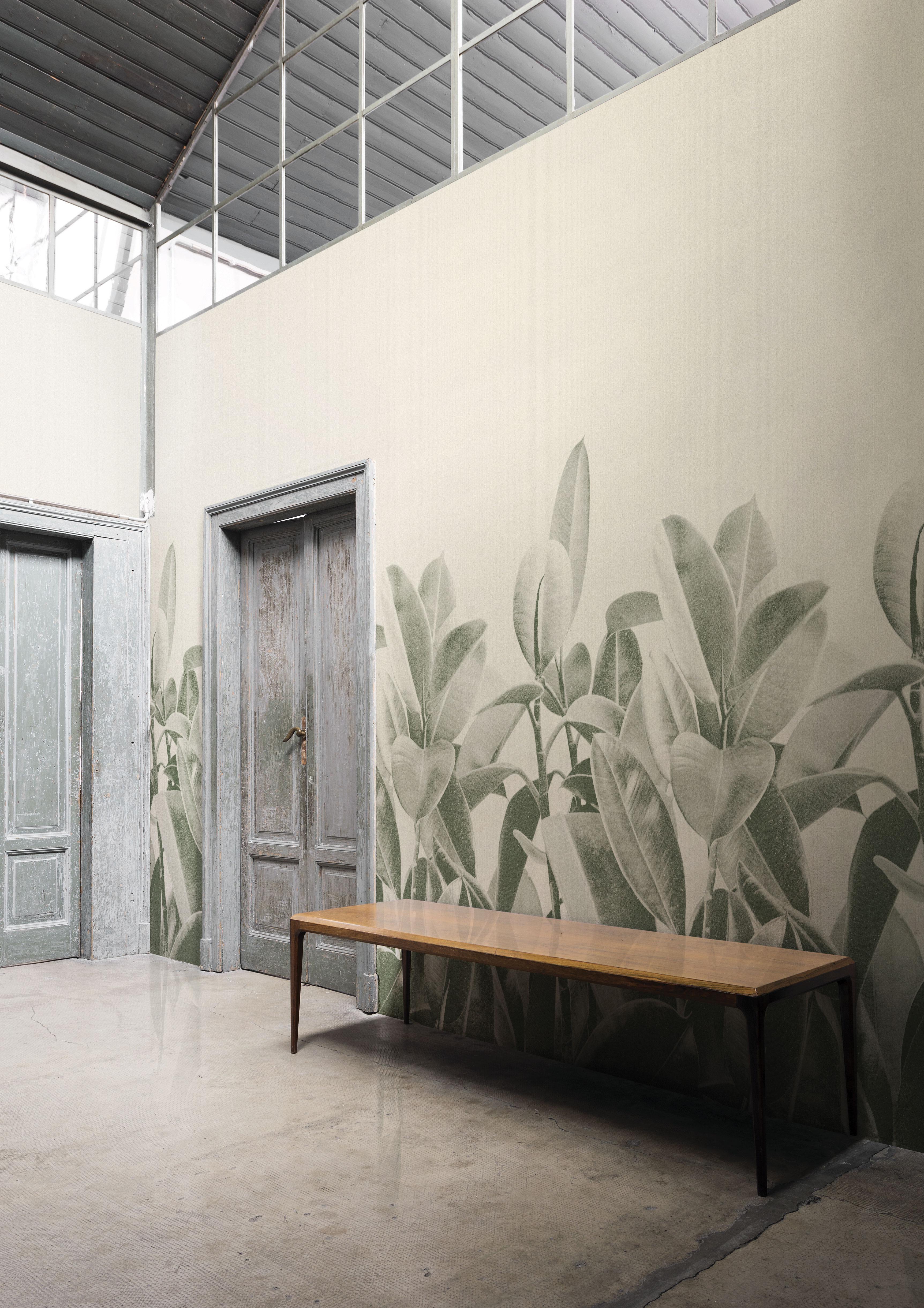 Londonart 18056 Rubber Plant - Francesca Besso