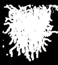 Logo LV.png