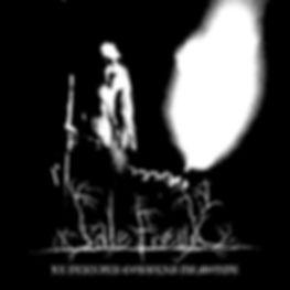 Front Le dernier corbeau du monde.jpg