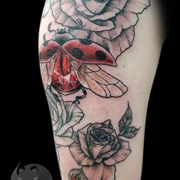 Lady Bugs & Roses