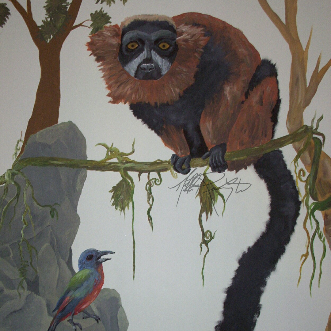 Lemur and Bird