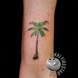 Itty Bitty Palm Tree