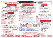 7-7参考)パッチテスト(遮閉試験)