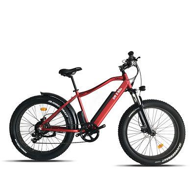 Bike 1a.jpg