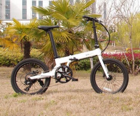 replacement 20 e bike.jpg