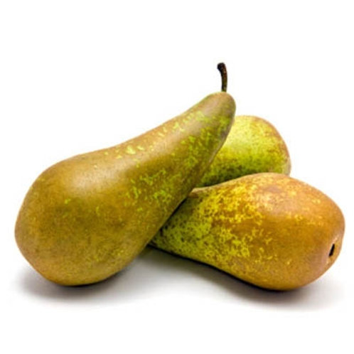 Pears - Conference - each