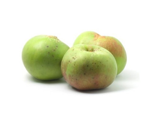 Apple - Bramley