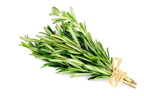 Herbs - Rosemary