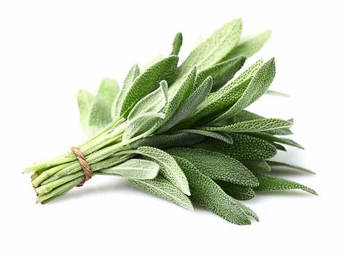 Herbs - Sage 25g