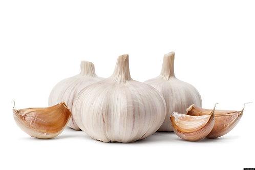 Garlic - large
