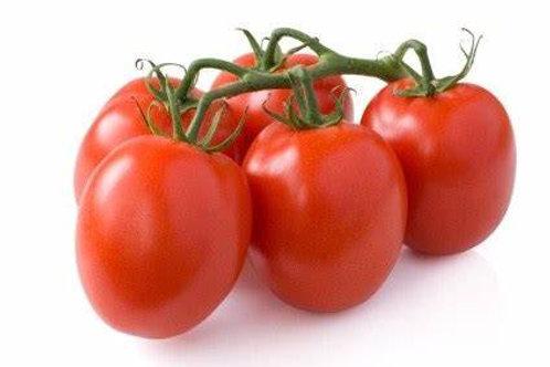 Tomatoes - plum vine