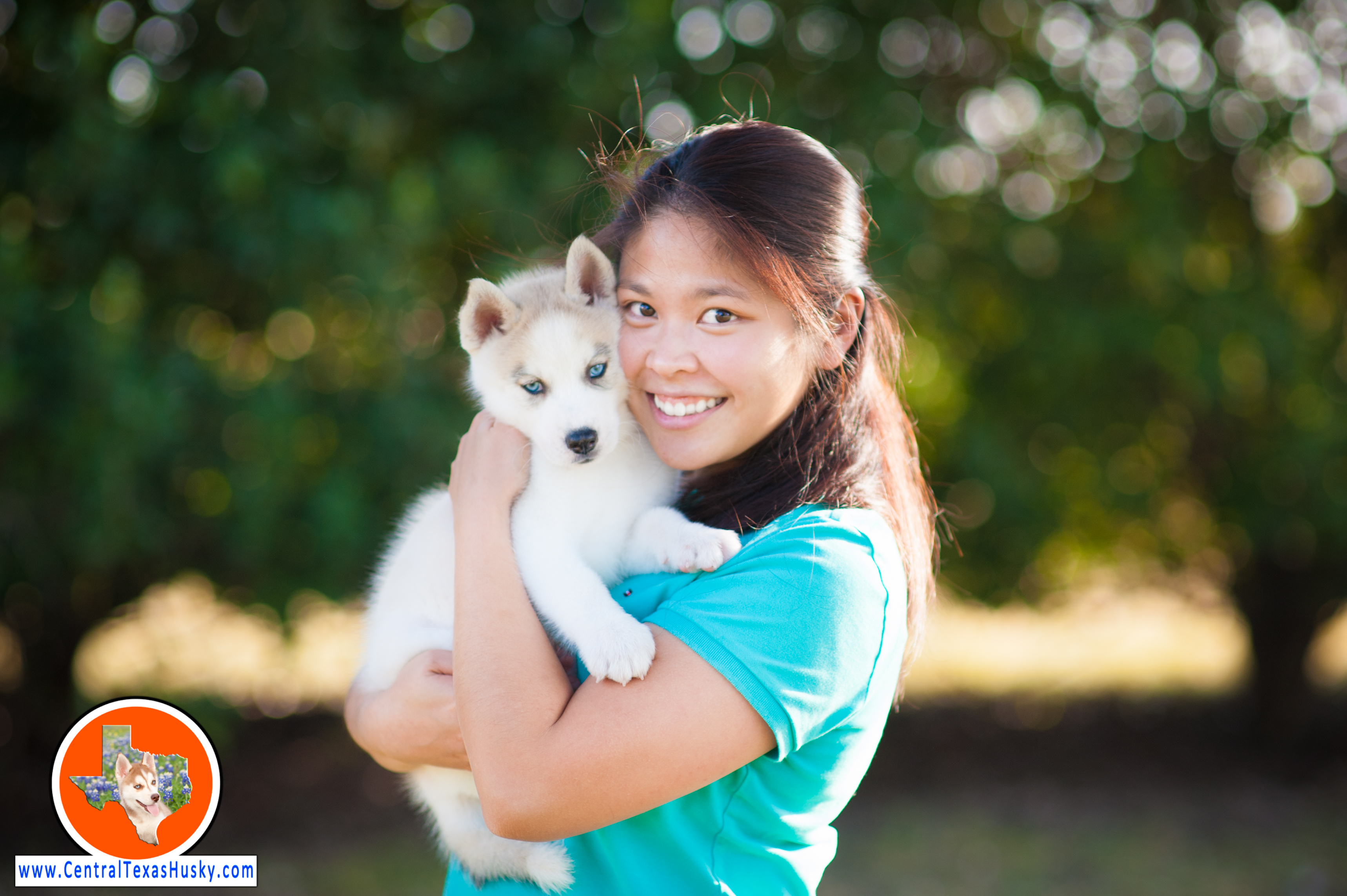central-texas-husky_austin-siberian-husky-breeder_702531_20171102
