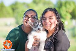 central-texas-husky_austin-siberian-husky-for-sale-by-texas-breeder_706465_20180622